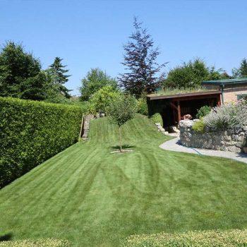 Murlasits Gartengestaltung mit Planung, Ausführung und Pflege - Rasenpflege danach