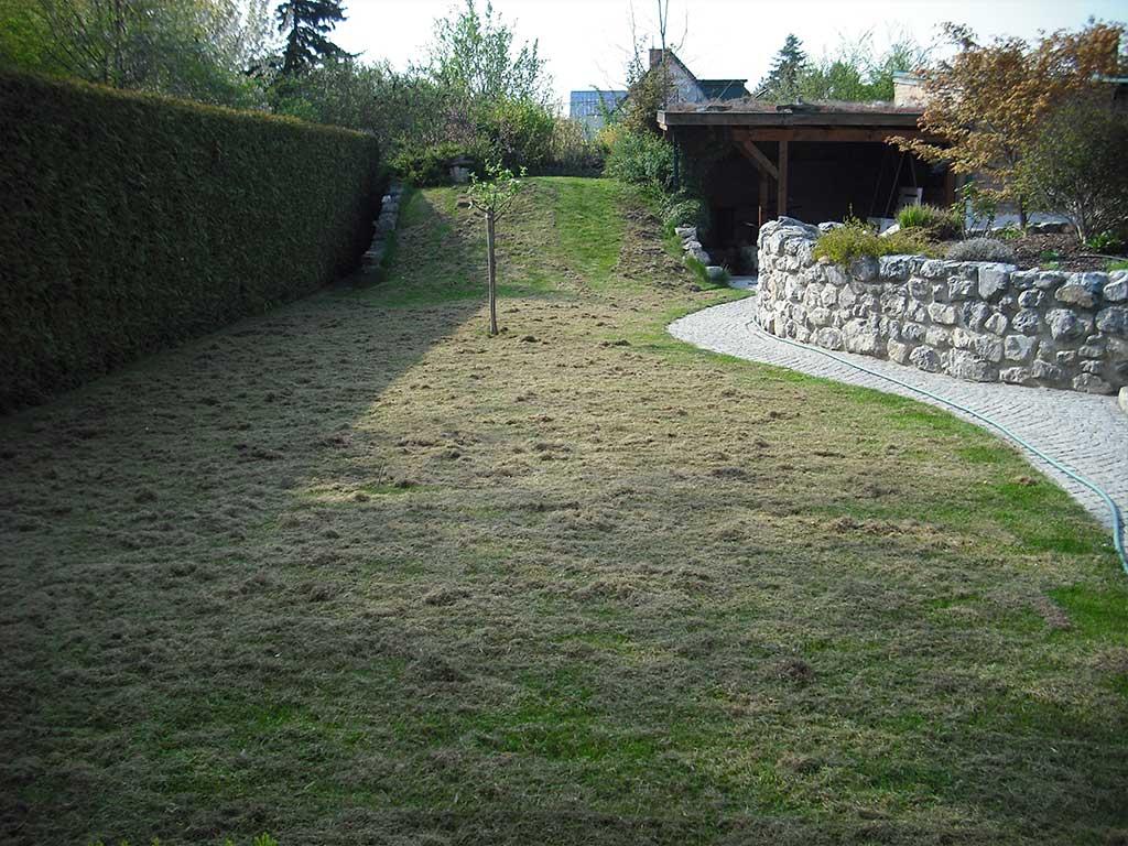 Murlasits Gartengestaltung mit Planung, Ausführung und Pflege - Rasenpflege davor
