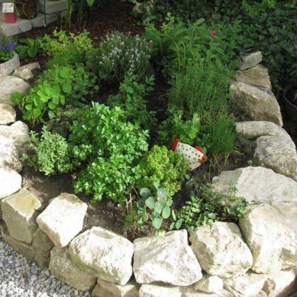 Murlasits Gartengestaltung mit Planung, Ausführung und Pflege - Steingartenbeet