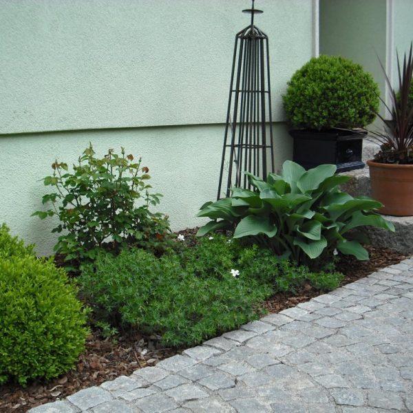 Murlasits Gartengestaltung mit Planung, Ausführung und Pflege - Steingartenpflanzen