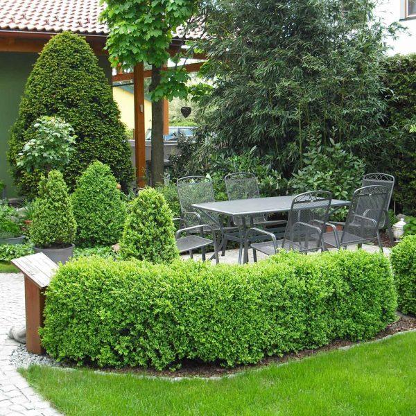 Murlasits Gartengestaltung mit Planung, Ausführung und Pflege